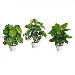 Umelá Rastlina Philodendron I